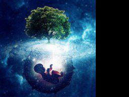 Webinar: Die spirituelle Geburt
