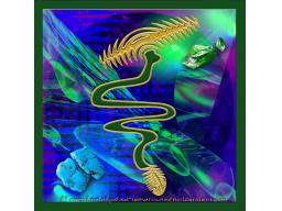 Webinar: Initiation in den Lemurischen Lichtkristall Lebensweg