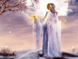 Webinar: Paladin (Priester/in) der neuen Zeit - Teil 2
