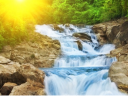 Webinar: Energieübertragung mit White Time Healing