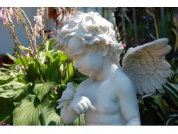 Webinar: Kleine Engelschule - wie kommuniziere ich mit meinen Engeln?