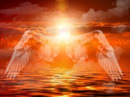 Webinar: GESCHENK! Stärke den Kontakt zu den Engeln und erhalte ein energetisches Geschenk von Deinem Schutzengel!