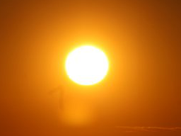 Webinar: Sonne + Erde