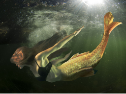 Webinar: Meerjungfrau-Synthese-Einweihung - die Spiegelung deiner Seele