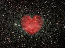 Webinar: Wenn Liebe die Antwort ist...
