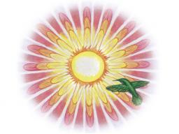 """Webinar: Inspiration & Meditation - """"Müdigkeit und Erschöpfung"""""""