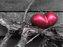 Webinar: Blockadenlösung Herz - Vorbereitung auf das Venusjahr - 20 % HEUTE
