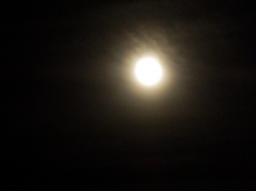 Webinar: Meditatives Ritual zu Beginn der Rauhnächte mit Thaddäus & Co
