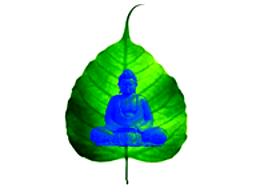 Webinar: Buddhismus erklärt: Die Vier Edlen Wahrheiten