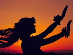 Webinar: Chakren-Gruppenmeditationsreise HAWAI'I-NOVEMBER-AKTION 60min