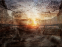 Webinar: Das Wakinyan Licht