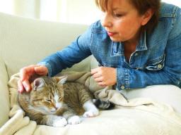 Webinar: Schnupper-Session Morphisches Feld Lesen :: Tierkommunikation :: Einzelsitzung