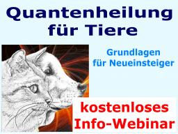 Webinar: Quantenheilung für Tiere - INFO-Webinar für Neueinsteiger