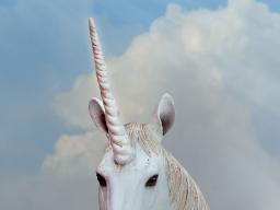 Webinar: Unicorn Energy Healing System ©