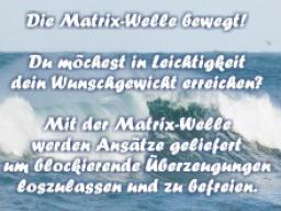 Webinar: Die Matrix-Welle bewegt - erreiche dein Wunschgewicht!