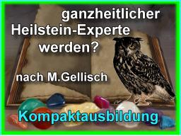 Webinar: HeilStein-Experte werden -1- nach M.Gellisch