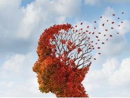 Webinar: Demenz-Chat: Tipps für Angehörige im Umgang mit Menschen mit Demenz