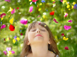 Webinar: Inneres Kind - Heilung