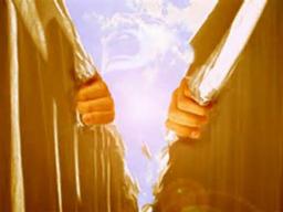 Webinar: IN 10 TAGEN DURCH DEN INNEREN SCHLEIER - CHALLENGE DURCH DAS CHRISTUS-PORTAL