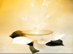 Webinar: Botschaft aus der geistigen Welt