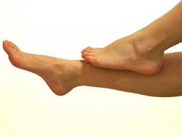 Webinar: Beine Knie