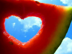 Webinar: 5 Schritte zum richtigen Partner