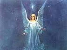 Webinar: HEILE mit Deinem Engel der Liebe - 33 Min. Einzelgespräch