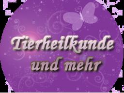 Webinar: Einhorn Regenbogen Energie Einstimmung ƸӜƷ