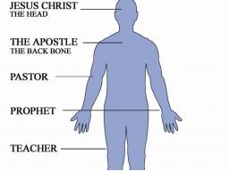 Webinar: JESUS UND SEINE 5 MANDATE FÜR DIE NEUE ERDE - SPIRITUELLE EINFÜHRUNG IN DEINE VERANTWORTUNG