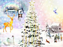 Webinar: <>  Gesegnete Weihnacht <> ENERGIEGESCHENK