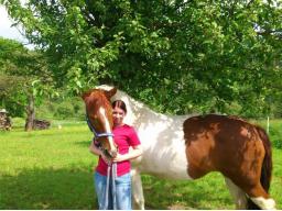 Webinar: ☆ EFT für Tiere- wir als Stellvertreter-Kostenlos  ☆