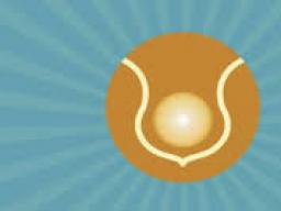 Webinar: Soul Body Fusion - deine Seelenverschmelzung