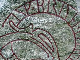 Webinar: Komische Zeichen  die ganzen Runen in den wichtigsten Bereichen entschlüsselt