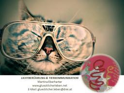 Webinar: Neue Erde - Sprache der Herzen * Mentale TIERKOMMUNIKATION*