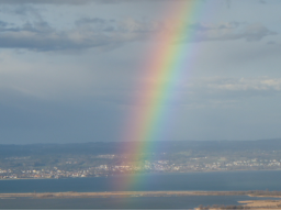 Webinar: Die Heilkraft der Regenbogenschlange