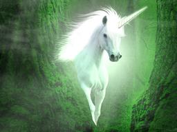 Webinar: Begegne dem heilenden Licht des Einhorns