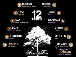 Webinar: DIE EINWEIHUNGS-SEGEN FÜR DIE 12 SPIRITUELLEN CLANS
