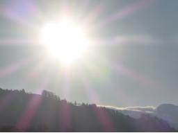 Webinar: Mit Serapis Bey und den Arcturianern: Unser Lebenskristall