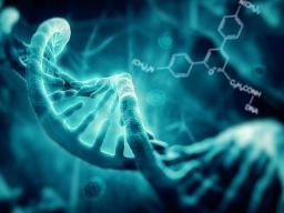 Webinar: 13.DNS Stränge Aktivierung + Die Erbe des Lichts + Aufstieg in das 5.Dimension