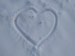 Webinar: Mit den Arcturianern: Gebrochene Herzen können heilen