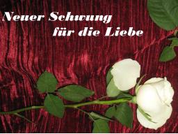 Webinar: Neuer Schwung für die Liebe- Einzelsitzung