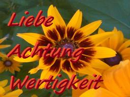 Webinar: Du wünschst Dir mehr Wertschätzung - Achtung - Liebe?