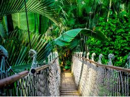 Webinar: Amazonas Dimensionswechsel
