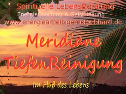Webinar: TiefenReinigung Meridiane   ..musikfrei