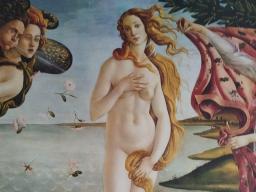 """Webinar: Kartenlegung """"Die innere Frau"""""""