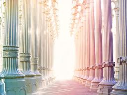 Webinar: Deine Essenz-Meditation
