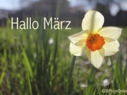Webinar: Wegbereitung für den März