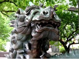 Webinar: Drachenmeditation