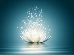 Webinar: Gewebe Straffung als Divine Body and Face Lifting für 7 Tage/Nächte als Kur