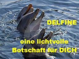 Webinar: Lichtvolle Botschaft der Delfine für Dich SCHRIFTLICH